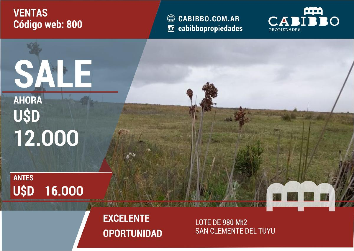 LOTE - 980MT2