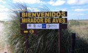 Ver detalles de Refugio para avistaje de aves en Punta Rasa