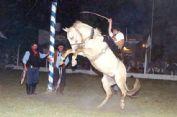 Ver detalles de XV Gran Fiesta Criolla del Centro Tradicionalista y Cultural de La Costa